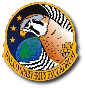 USAF / DARPA FALCON Program